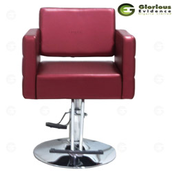 salon chair y192